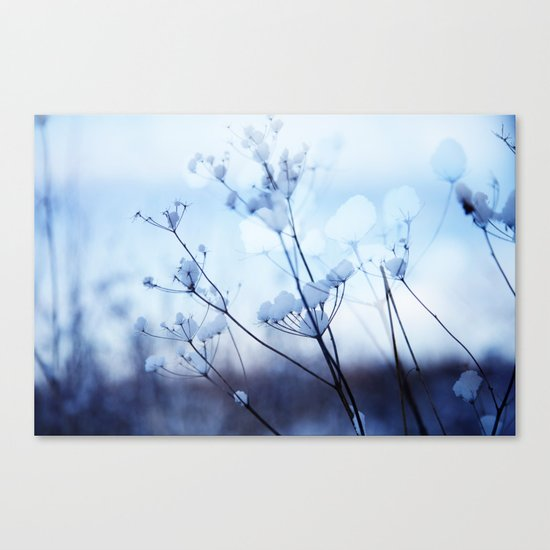 Winter 1 Canvas Print