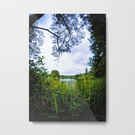 Lake View Metal Print