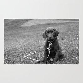 B&W Puppy Rug