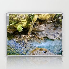 johnston canyon, 2017. Laptop & iPad Skin
