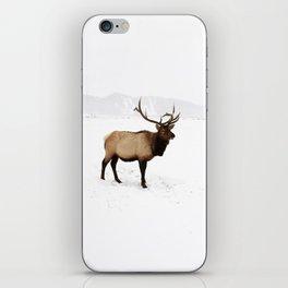 Standing Elk in Jackson Hole, Wyoming iPhone Skin