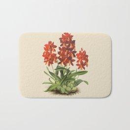 R. Warner & B.S. Williams - The Orchid Album - vol 01 - plate 004 Bath Mat
