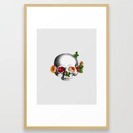 S&R Framed Art Print