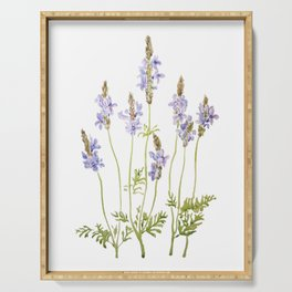 purple fernleaf lavender watercolor Serving Tray