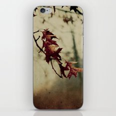 Knowing When to Let Go iPhone & iPod Skin