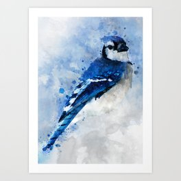 Watercolour blue jay bird Art Print