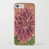 dahlia iPhone & iPod Cases featuring Dahlia  by maggs326
