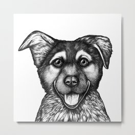 Shepherd Dog Metal Print