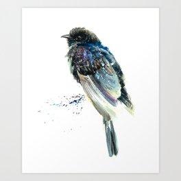Black Cuckoo Art Print