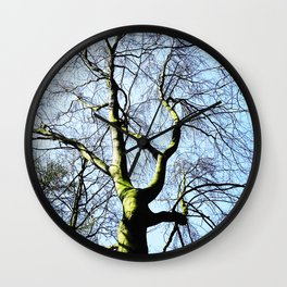 Naked Tree Wall Clock