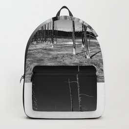 Lodgepole Pines Backpack