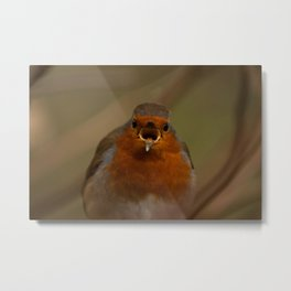 Robin Shout Metal Print