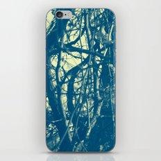 668 iPhone & iPod Skin