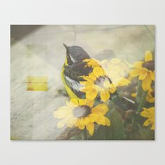 Nesting Canvas Print