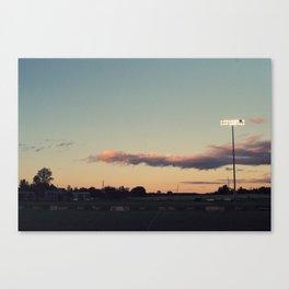 258//365 Canvas Print