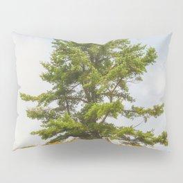 Meadow Warden Pillow Sham