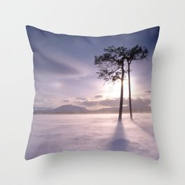 Two trees in winter Throw Pillow
