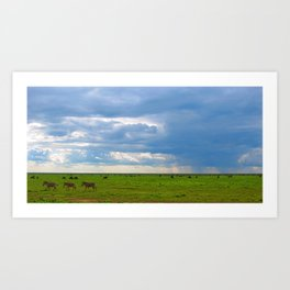 Zebra crossing Ndutu Art Print