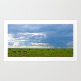 Zebra crossing Ndutu Art Print