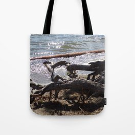 Roots of Huge Old Pine Tree Reaching Into The Lake Tote Bag