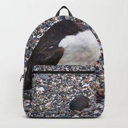 Razorbill Walking on the Beach Backpack