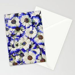 White and Blue Daisies II Stationery Cards