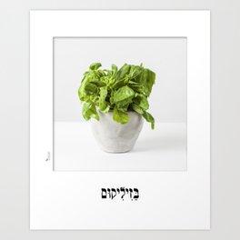 Basil hebrew letters poster Art Print