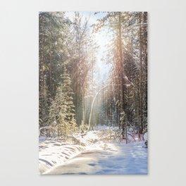 Sunny winter day Canvas Print