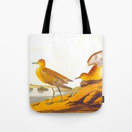 Buff-breasted Sandpiper Bird Tote Bag