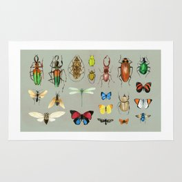 The Usual Suspects - Insects on grey Rug