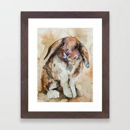 BUNNY #1 Framed Art Print