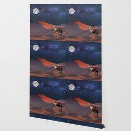 Sahara Star Gazing Wallpaper
