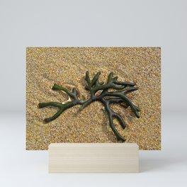 Ocean Gift Mini Art Print