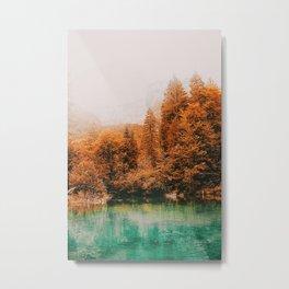 By the Lake II Metal Print