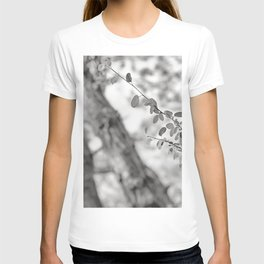 Woods Secrets. Mistery Into The Deep Forest T-shirt