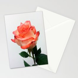Lovely Peach Rose Stationery Cards