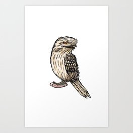 Tawny Frogmouth Art Print