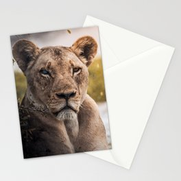 Lion nature Stationery Cards