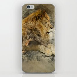 Lion on the rocks iPhone Skin