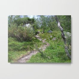 Norway Trail Metal Print