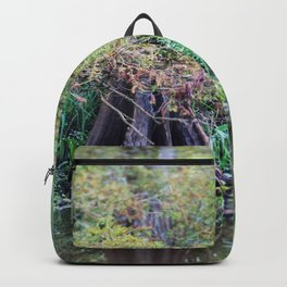 Louisiana Bayou Backpack