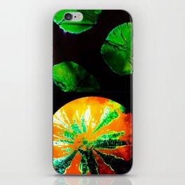 Different Worlds iPhone Skin
