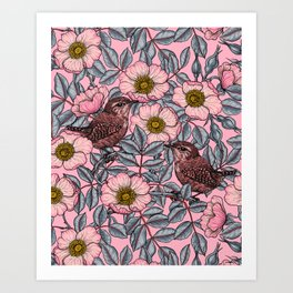 Wrens in the roses   Art Print