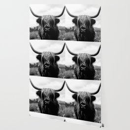 Scottish Highland Cattle Black and White Animal Wallpaper