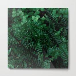 Leaves of Life Metal Print