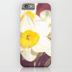 Daffodil flower iPhone 6s Slim Case