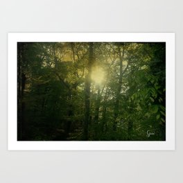Newelly Forest Art Print