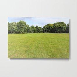 Blackweir Fields, Bute Park, Cardiff Metal Print