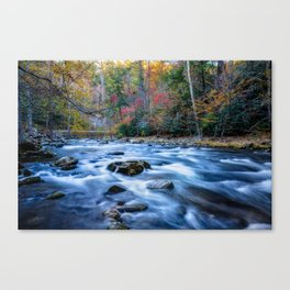 Fall in the Smokies - Autumn Colors at Laurel Creek in Smoky Mountains Canvas Print