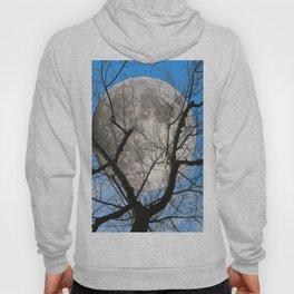 Evening moon Hoody